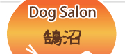 Dog Salon ����